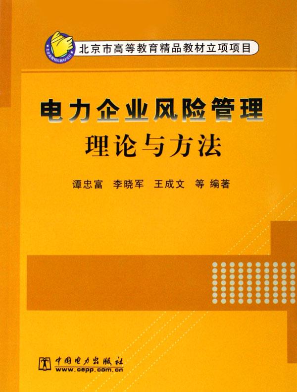 电力企业风险管理理论与方法