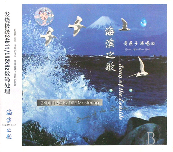 洛天依白夜梦笛子谱-奏海滨之歌其他曲谱   cd海