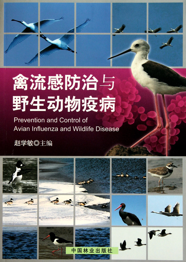禽流感防治与野生动物疫病