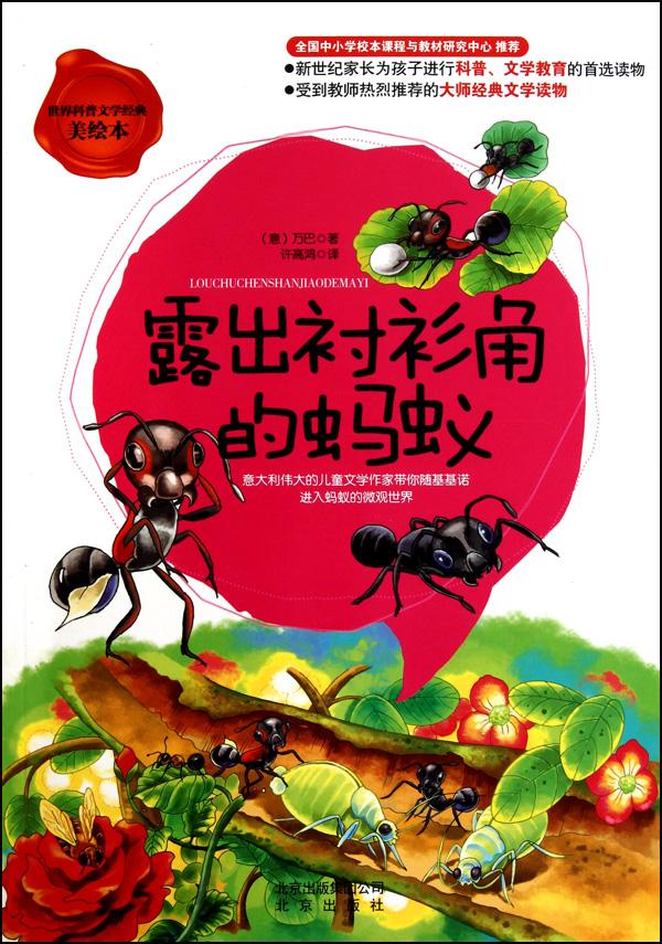 露出衬衫角的蚂蚁世界科普文学经典美绘本