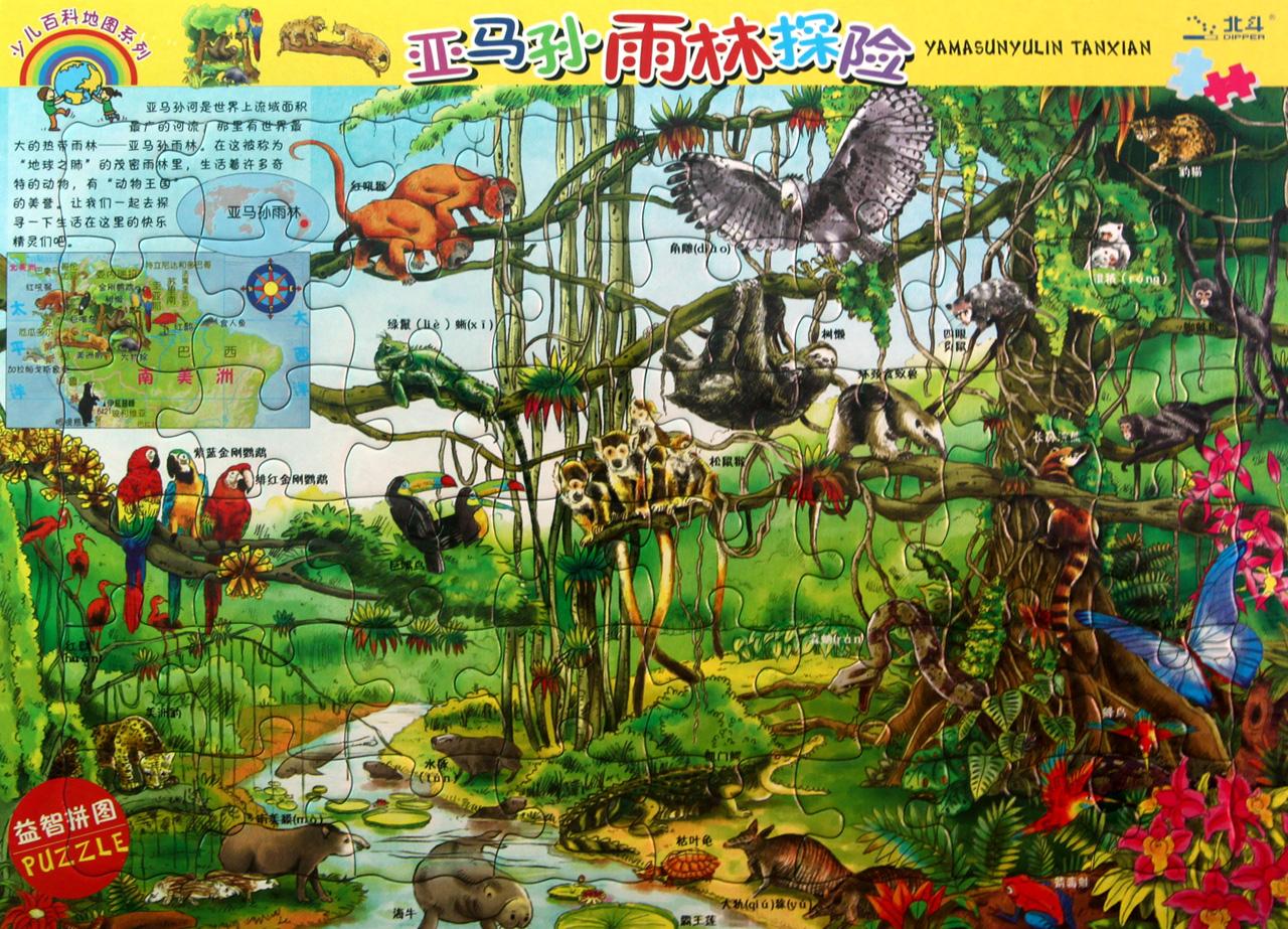 亚马孙雨林探险世界动物