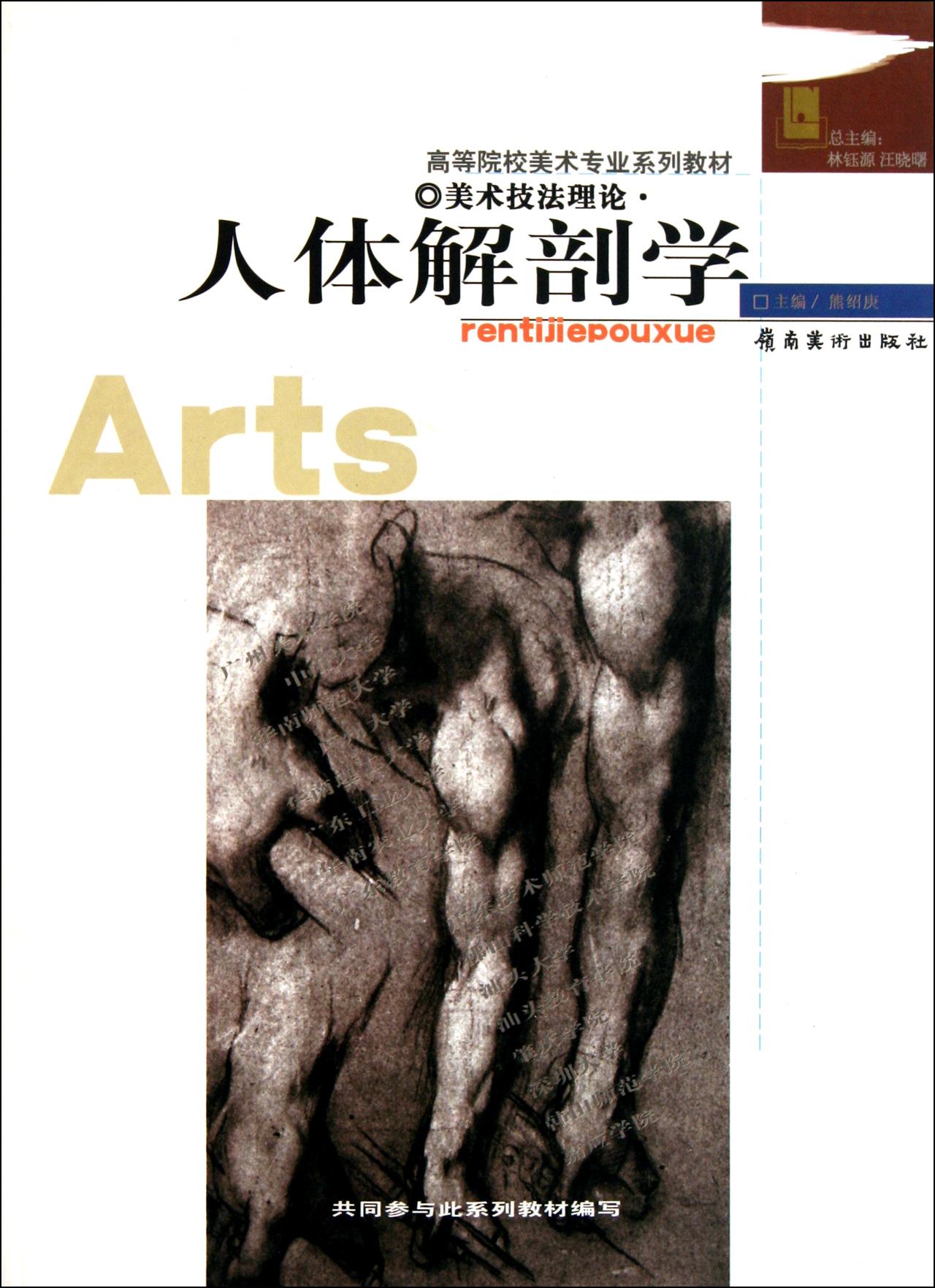 人体解剖学(美术技法理论)图片