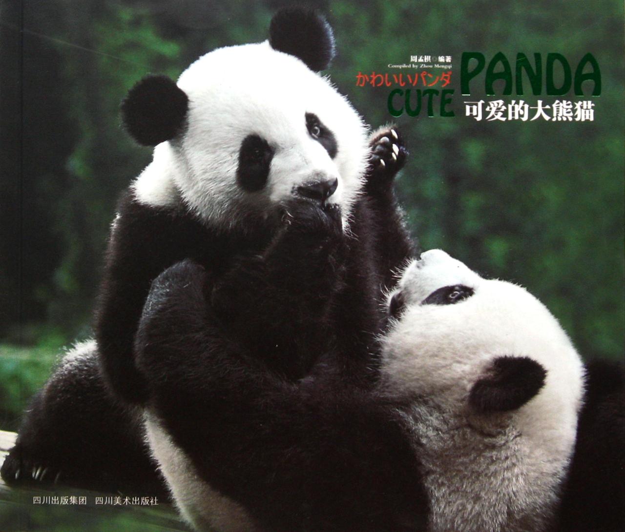 可爱的大熊猫-博库网