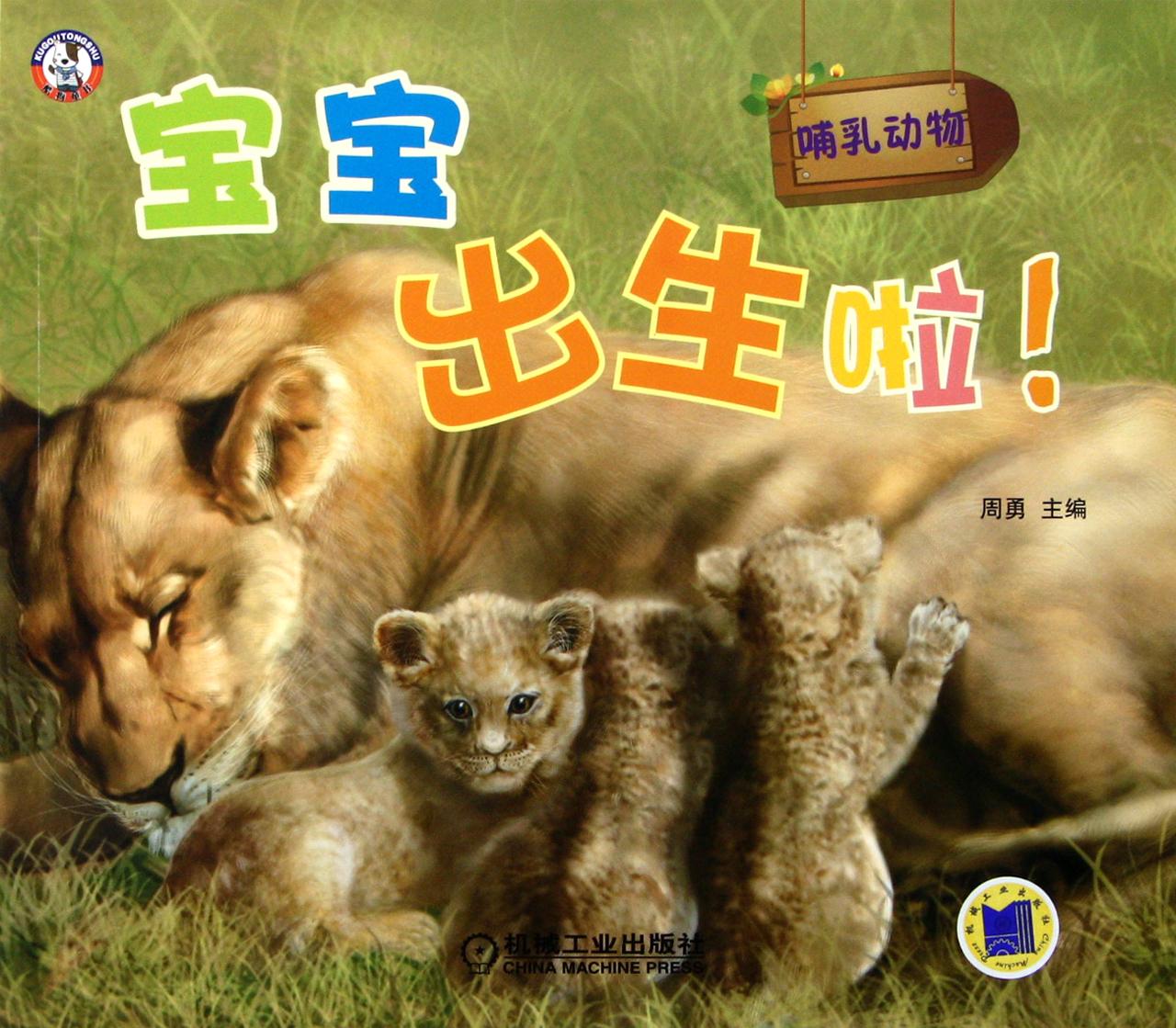 你知道小动物都是怎么出生