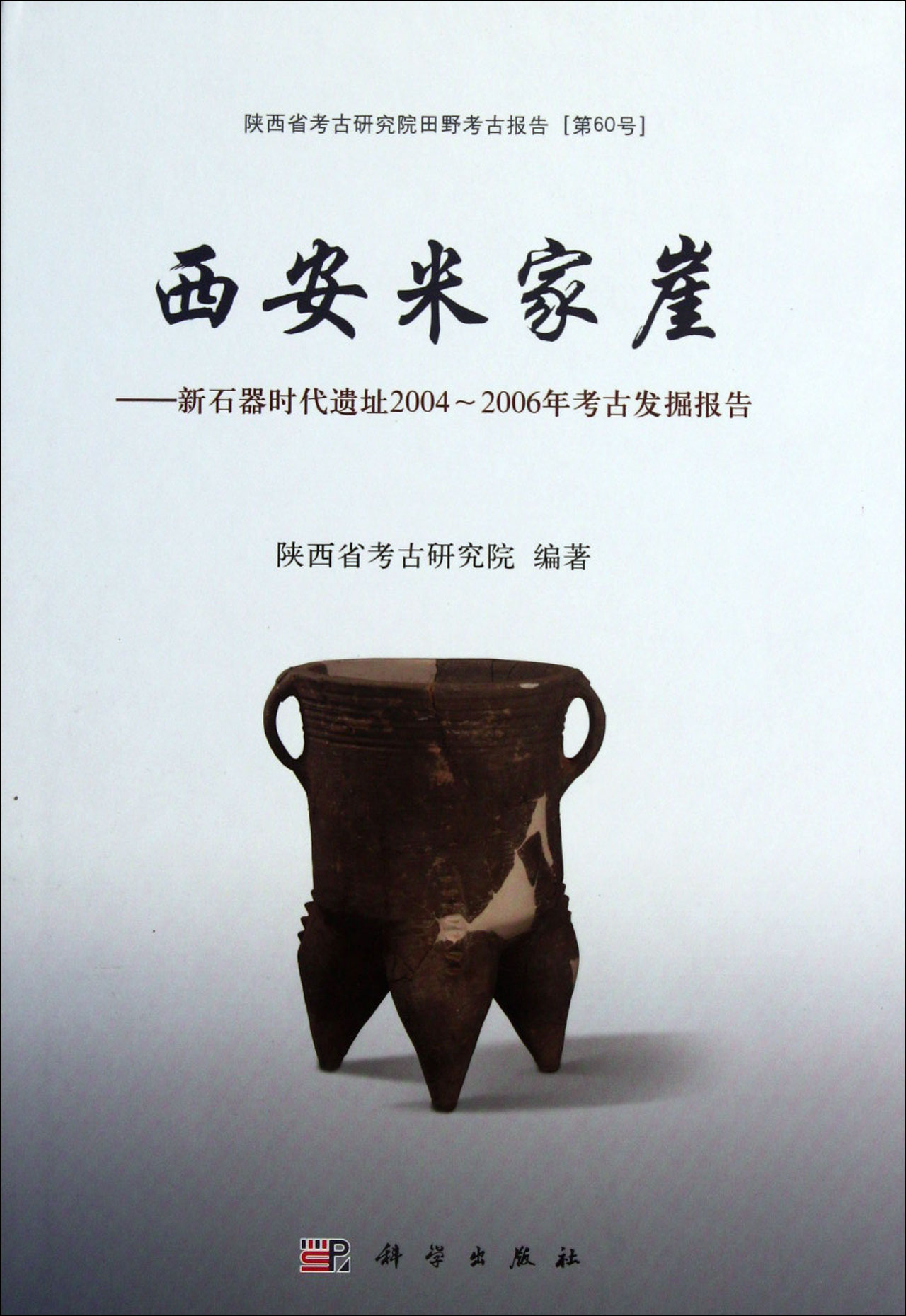时代遗址2004-2006年考古发掘报告(陕西省考古研究院田野考古报告)(精