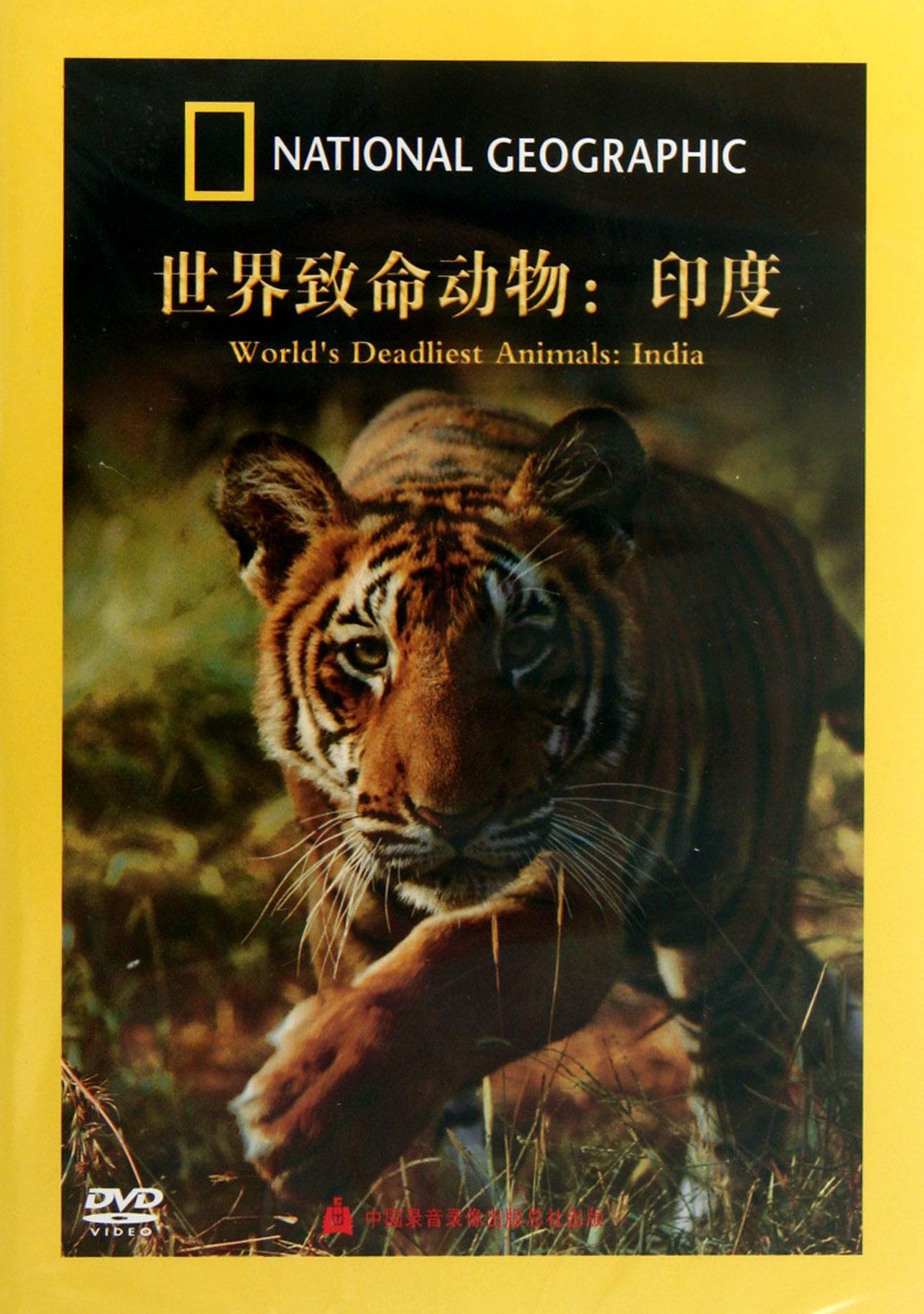 dvd世界致命动物合集(印度)
