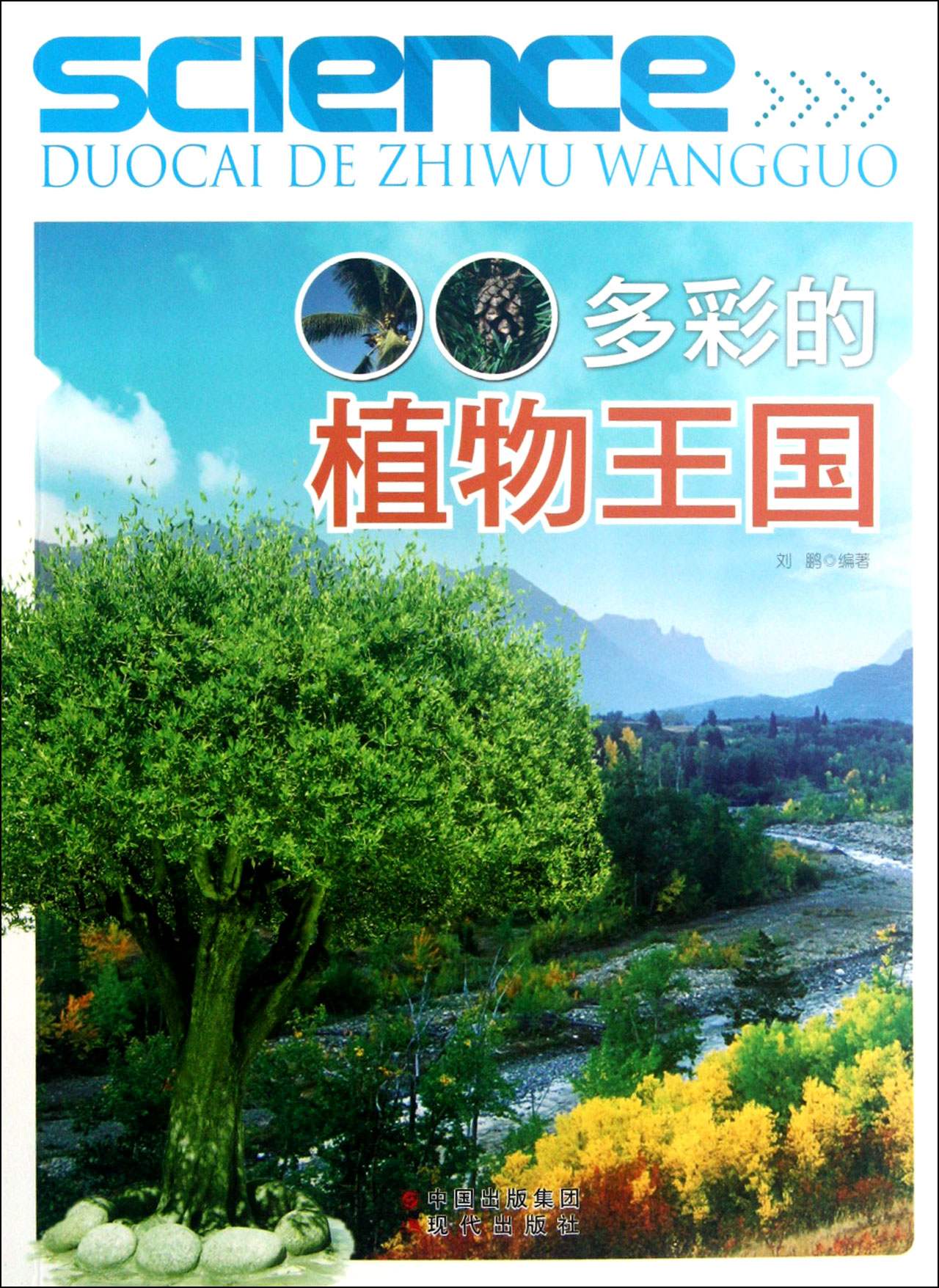 多彩的植物王国图片