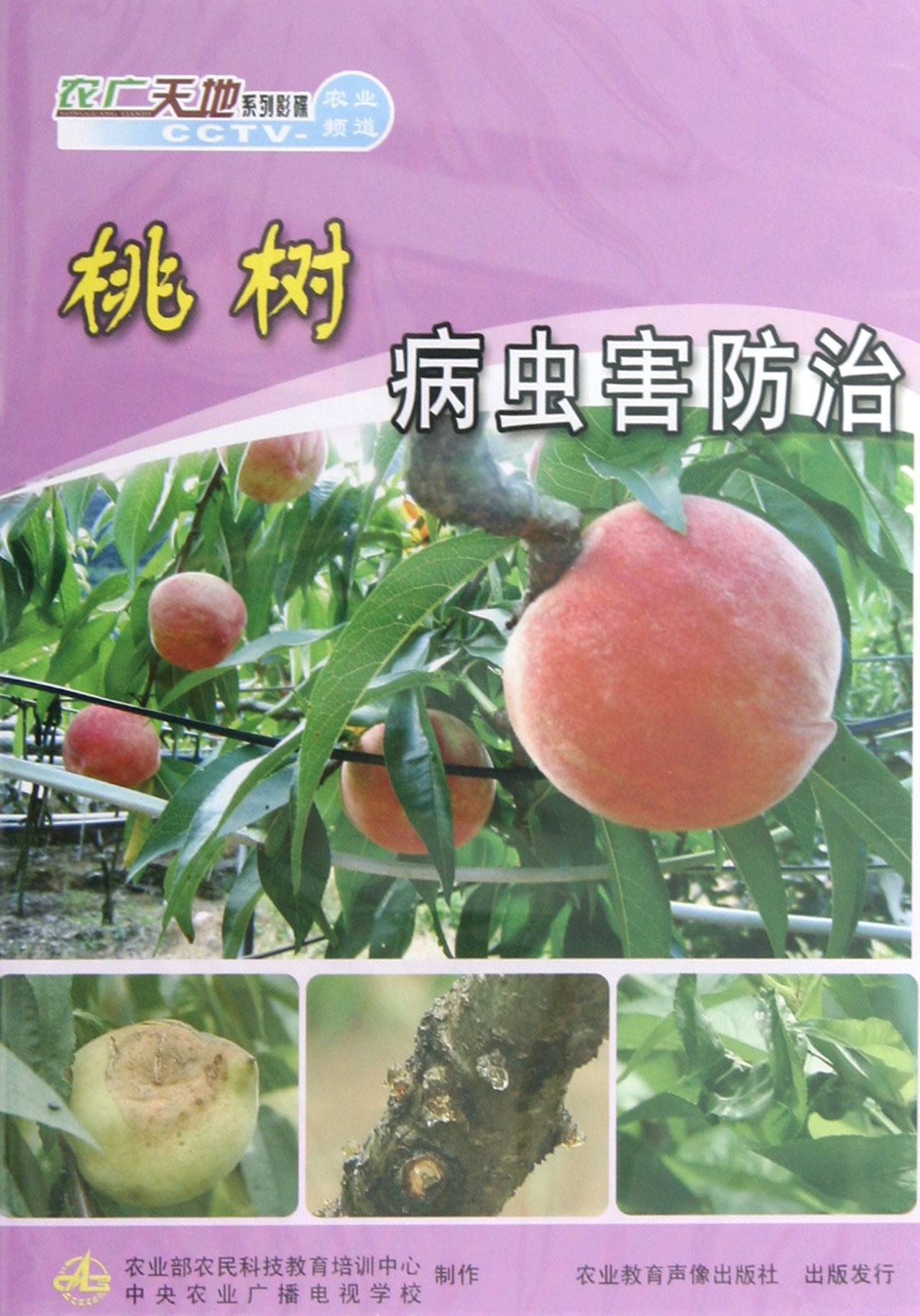 dvd桃树病虫害防治