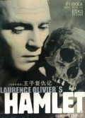 DVD-9王子复仇记(经典收藏版)