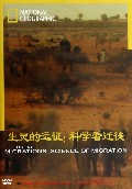 DVD生灵的远征科学看迁徙