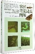 农田常见昆虫图鉴(精)