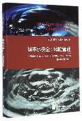城市水安全--风险管理/全球城镇化水问题丛书
