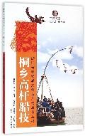 桐乡高杆船技/浙江省非物质文化遗产代表作丛书