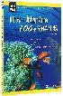 世界上最神奇的100种海洋生物/图说海洋