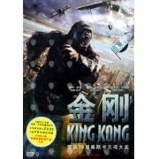 DVD-9金刚