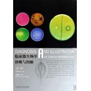 临床微生物学诊断与图解(精)