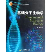 基础分子生物学(普通高等教育十五国家级规划教材)