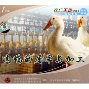 VCD肉鸭的屠宰与加工