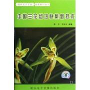 DVD中国兰花组培快繁新技术/园林花卉实践音像教材系列