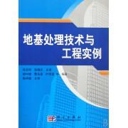 地基处理技术与工程实例