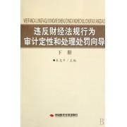 违反财经法规行为审计定性和处理处罚向导(下)