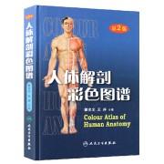 人体解剖彩色图谱(精)