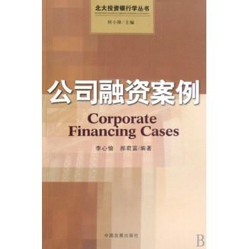公司融资案例/北大投资银行学丛书