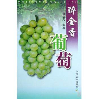 醉金香葡萄