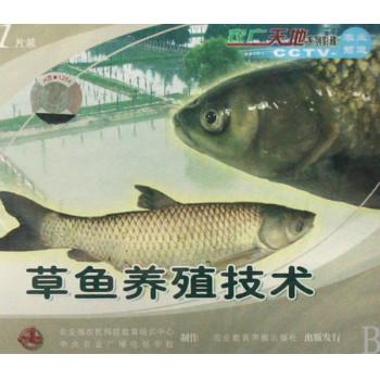 VCD草鱼养殖技术