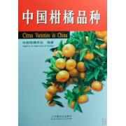 中国柑橘品种(精)