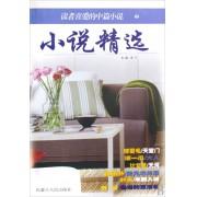 小说精选(2)/读者喜爱的中篇小说