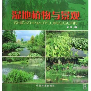 湿地植物与景观