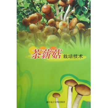 DVD茶薪菇栽培技术