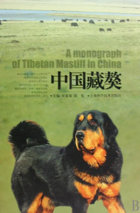 中国藏獒(精)