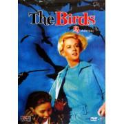 DVD-9鸟(终极修复版)