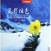花影炫色(中国野生花卉精彩图片选第1卷中国国家地理)(精)