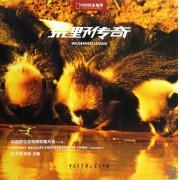 荒野传奇(中国野生动物精彩图片选A卷中国国家地理)(精)