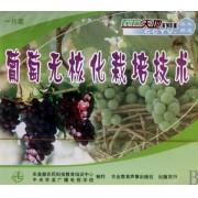 VCD葡萄无核化栽培技术