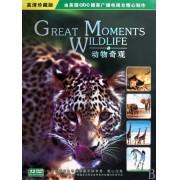 DVD动物奇观(12碟装)