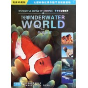 DVD海底世界(12碟装)