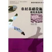 农村基础设施建设及范例/新农村建设丛书