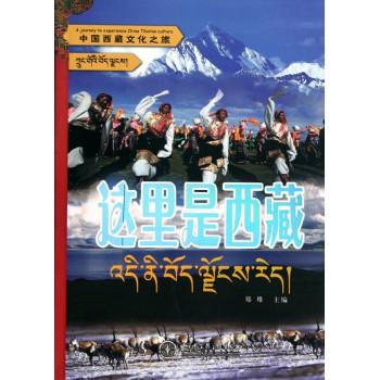 这里是西藏/中国西藏文化之旅