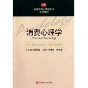 消费心理学(全国应用心理学专业系列教材)