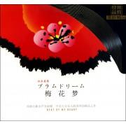 CD似水柔情梅花梦
