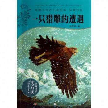 一只猎雕的遭遇/动物小说大王沈石溪品藏书系