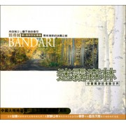 CD班得瑞第5张新世纪专辑(迷雾森林)