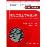 煤化工安全与案例分析(煤化工系列教材高职高专十二五规划教材)