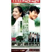 DVD橄榄树(7碟装)