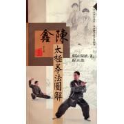陈鑫太极拳法图解(附光盘)