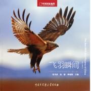飞羽瞬间(中国野生鸟类精彩图片选第2卷中国国家地理)(精)